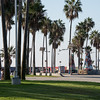 Veteran's Day weekend in Venice Beach