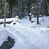 Looking up the Snow Creek Trail, entering the wilderness area.