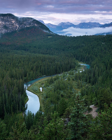 Bow River dawn