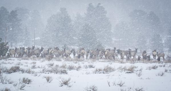 Colorado April 2013-41
