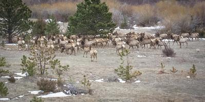 Colorado April 2013-34