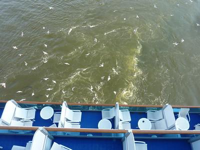 Cruise 2010-07-03 at 10-04-01
