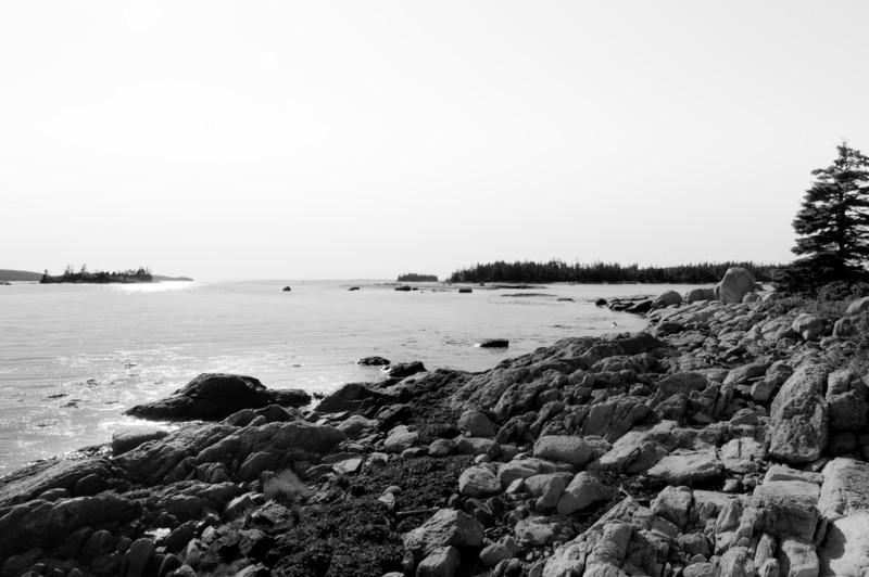 Beyond the rocks on Wheat Island