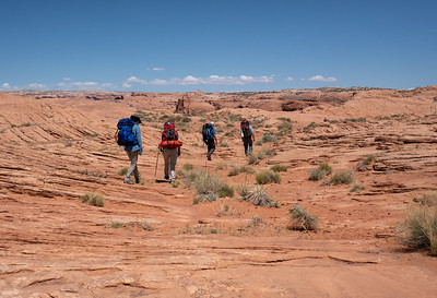 Open Desert Crossing
