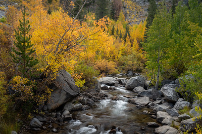 South Fork Bishop Creek