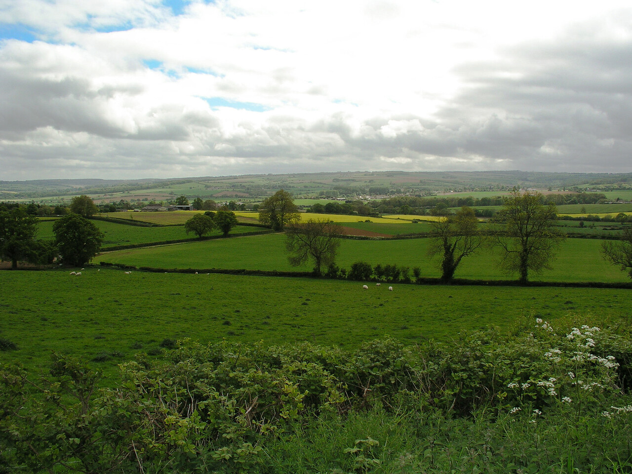 Hidcote to Warwick<br /> May 24, 2005