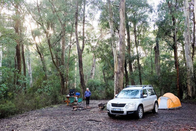 Errinundra National Park, Winter Campers