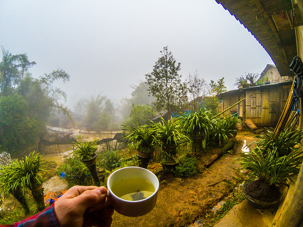 Checking the foggy weather out the back of the house, while sipping on tea of course