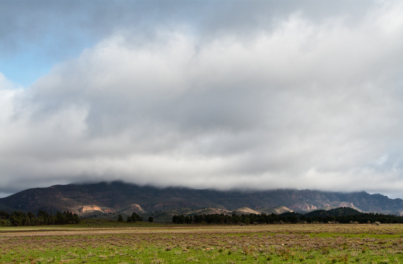 Cloudland in the desert