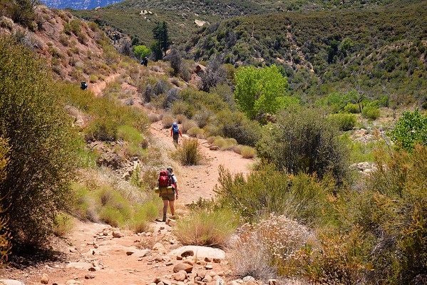 Sespe Creek Hike 011