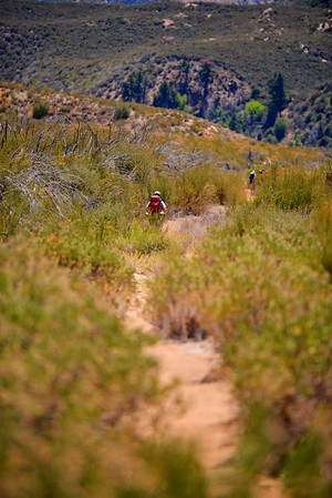Sespe Creek Hike 004
