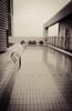 Rooftop pool at Traders Hotel in Hong Kong