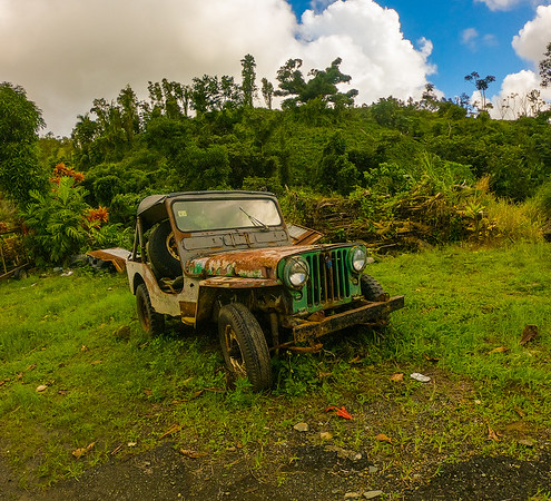 """Sweet old willy in the front yard. Place we parked the tour bus before heading """"Off the Beaten Path"""" Rain forest tour/hike"""