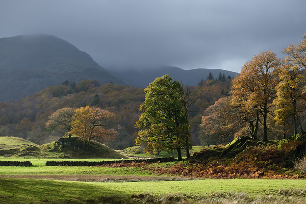 Autumn in the Langdale Valley