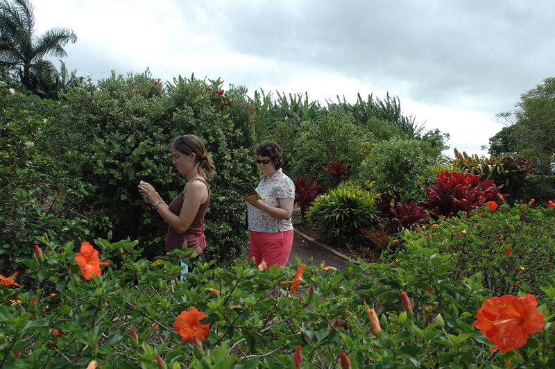 Walking through the Dole Plantation Garden