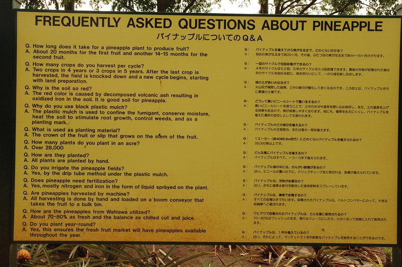 Pineapple FAQ