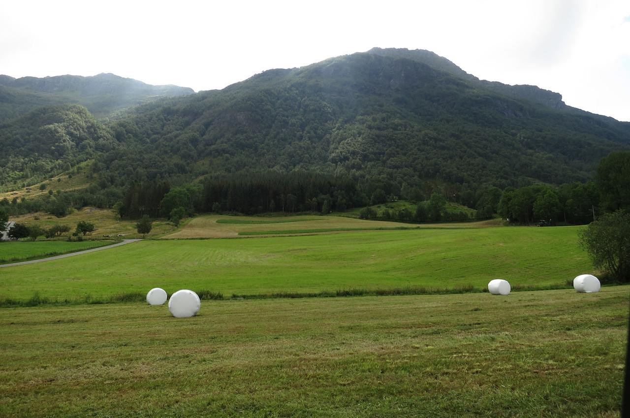 Sande farm