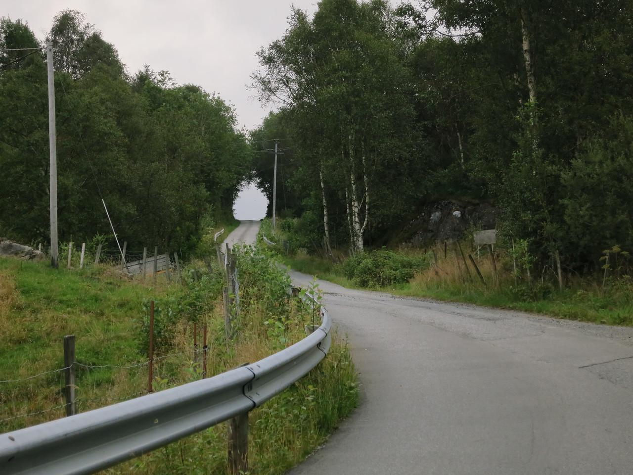 The municipal road to Sande farm