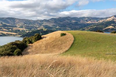 Groomed Hills