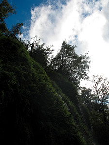 20061014_1724