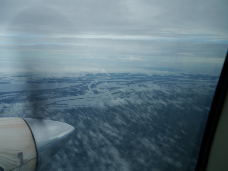 The Amazon basin from the airplane on the way to Barcelos