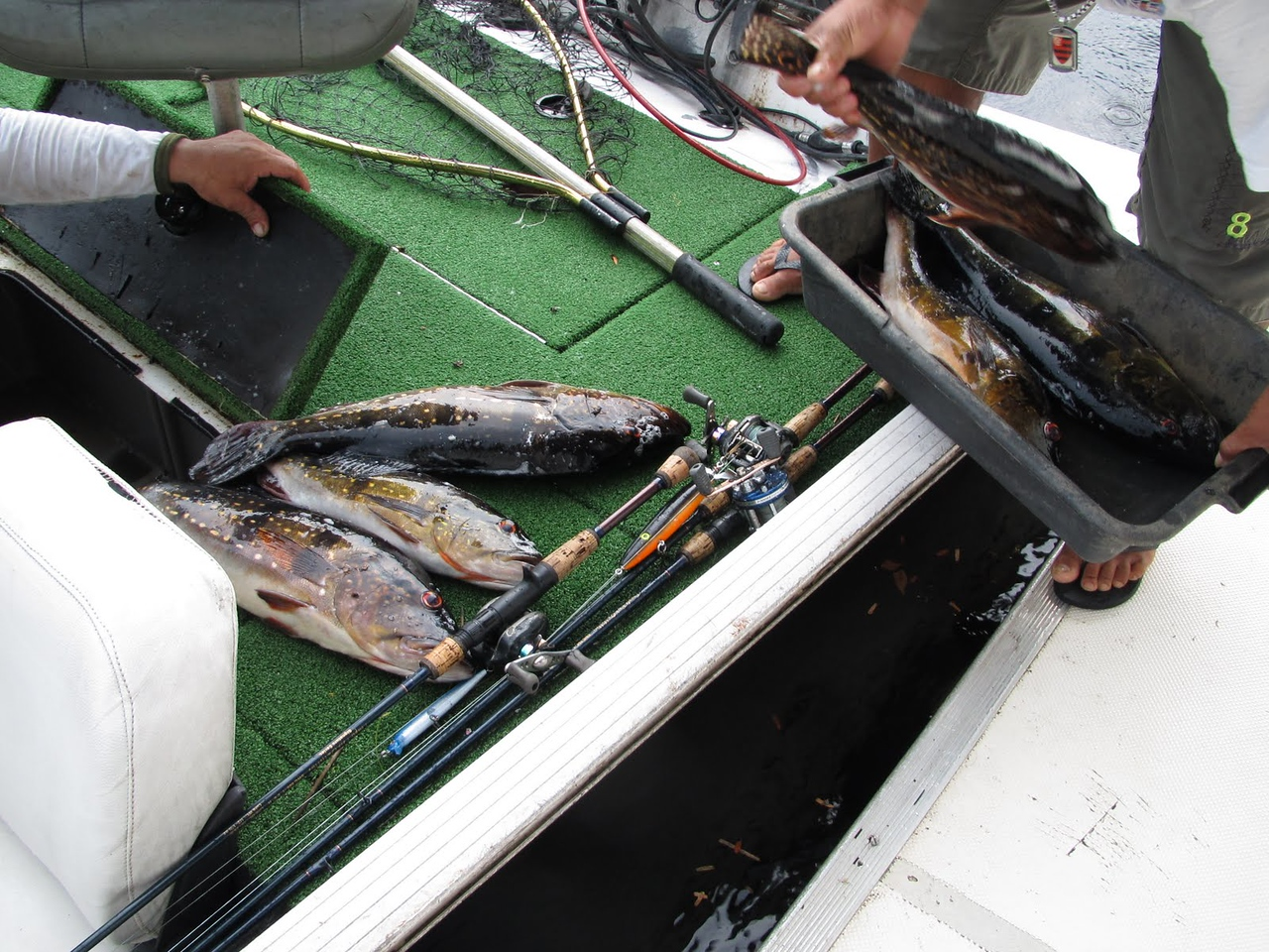 Bringing our catch aboard for dinner