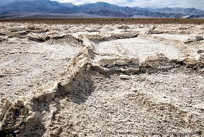 Salt Pan Polygons, Badwater (282 feet below sea level, the lowest point in North America)