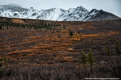 The colors of Denali.