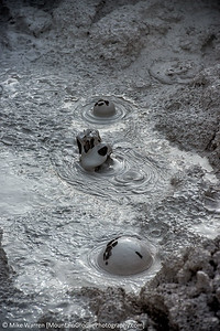 Bubbling Mud Pots (composite)