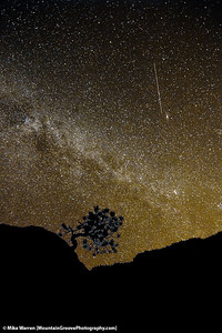 The milky way, with a meteor!