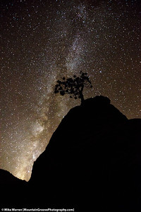 The milky way explodes into the desert sky!