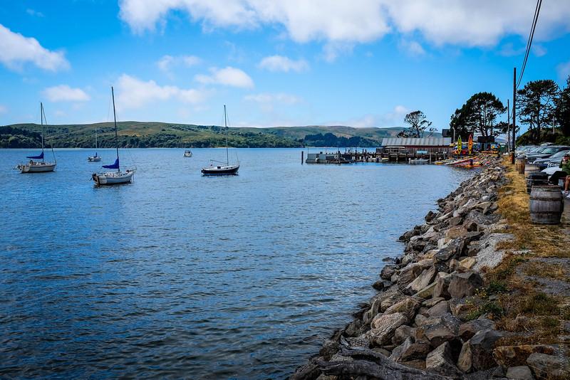 Tomales Bay-1