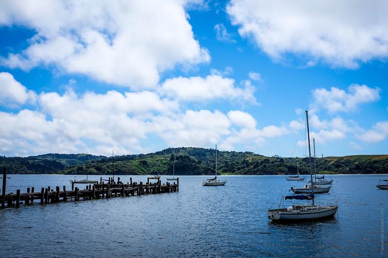 Tomales Bay-2