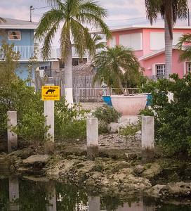 Sail Florida-28