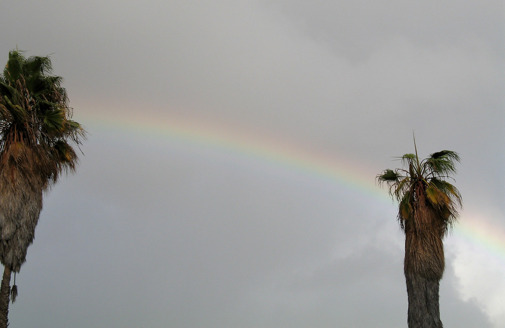 We love rainbows! We saw rainbows in flight, then this one welcomed us to San Diego. It was over the Enterprise rental place.