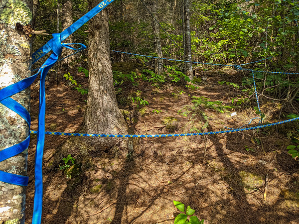"""bhahahah. So we used an old climbing rope for our bear bag hanging system. We had a bunch of extra rope. So I just started to wrap it around trees. Kept calling it, """"my bear booby trap"""" lol. No bears got to out stuff so I call that a win."""