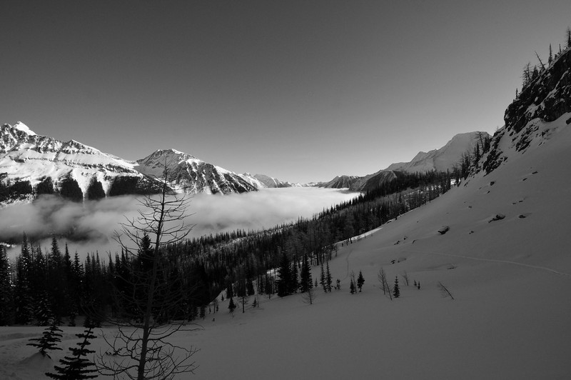 Jumbo Valley Fog