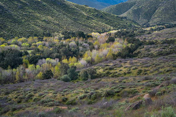 Cedar Creek Valley