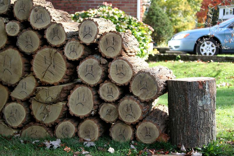 Sad logs.