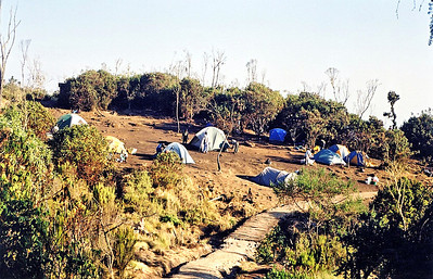 Our first camp, on the Shira Plateau