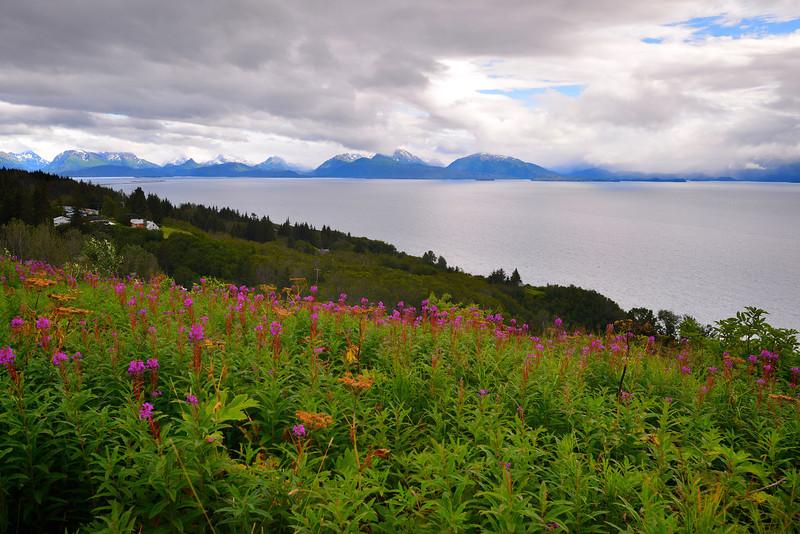 Homer Alaska 037
