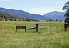 The famed pastures of Tom Groggin