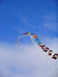 Most amazing kite I've seen.  Waterside in Bellingham.