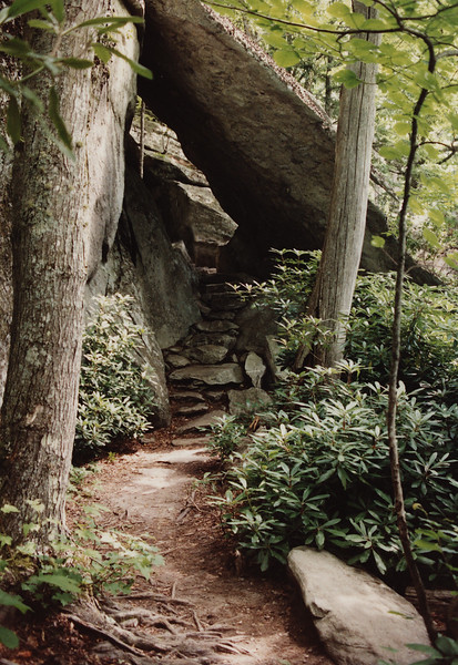 This is the photo we tried to retake. We found this lovely place in 1993, but couldn't remember where it had been taken. This is one of our favorite photos, so were delighted to locate these  rocks and this beautiful trail 24 years later.