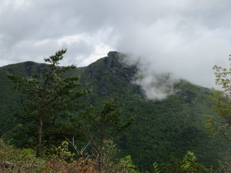 The clouds blew into the gorge. We stayed to enjoy the show.. This is Haoksbill.
