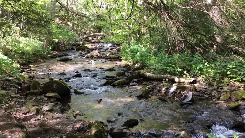 The trail follows the Wautauga River.