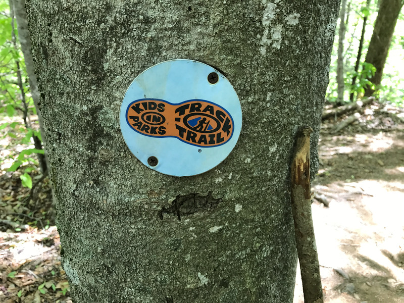 This is a cool trail for the kiddos!