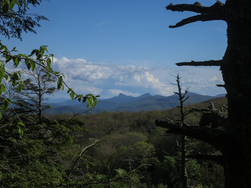 View of Table Rock and Hawsbill from the Tanawa Trail
