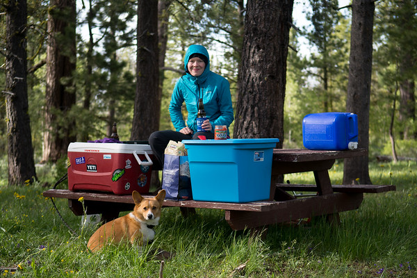 """Our campsite nestled in the pines, there were a """"few"""" mosquitos around making long sleeves, pants, and hoods a wise and sanity saving choice."""