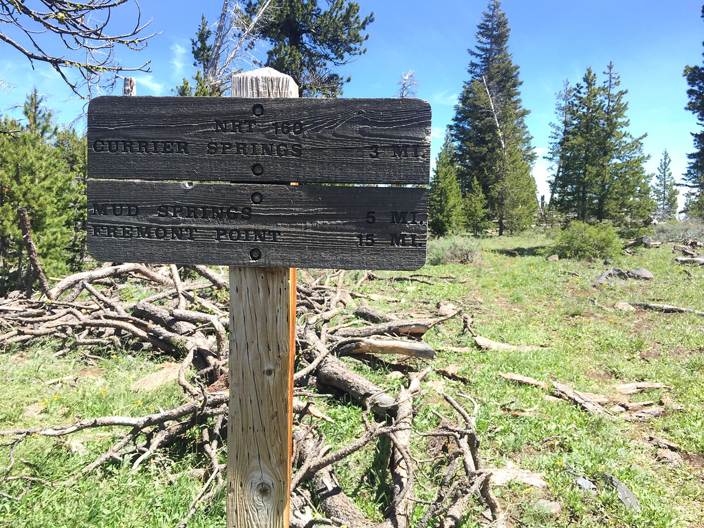Near Government Harvey Pass, trail sign indicating distances along Winter Ridge.